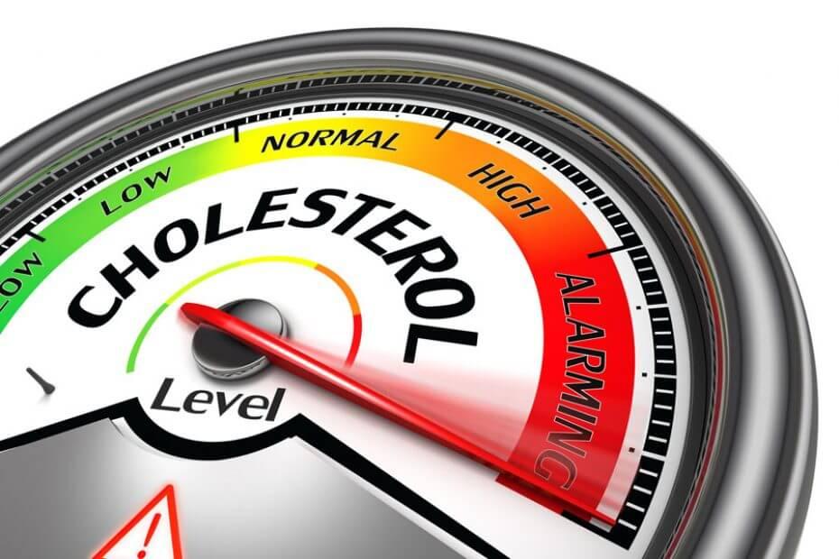 alimentos que nos ayudan a reducir el colesterol