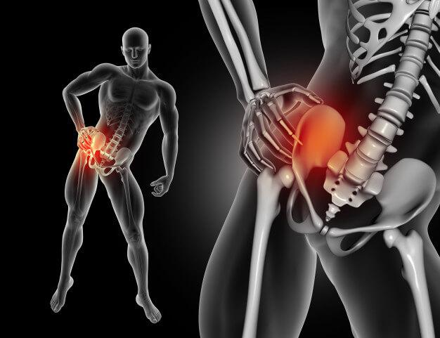 movilidad cadera