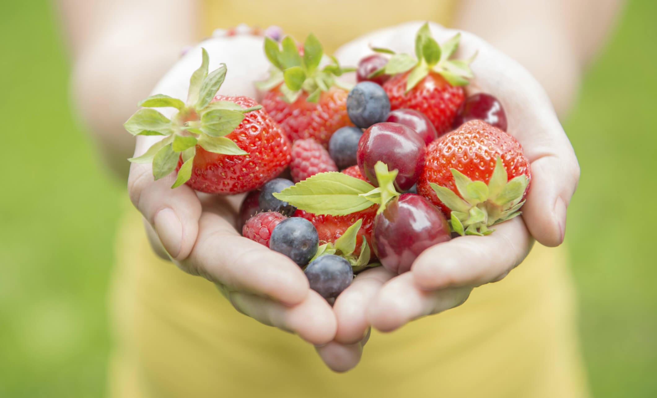 dossier compra sana y saludable